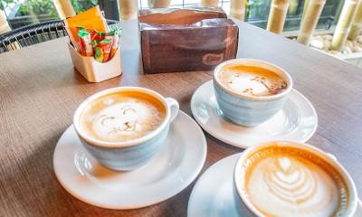 Restaurante Bar Picoteo Café Hotel